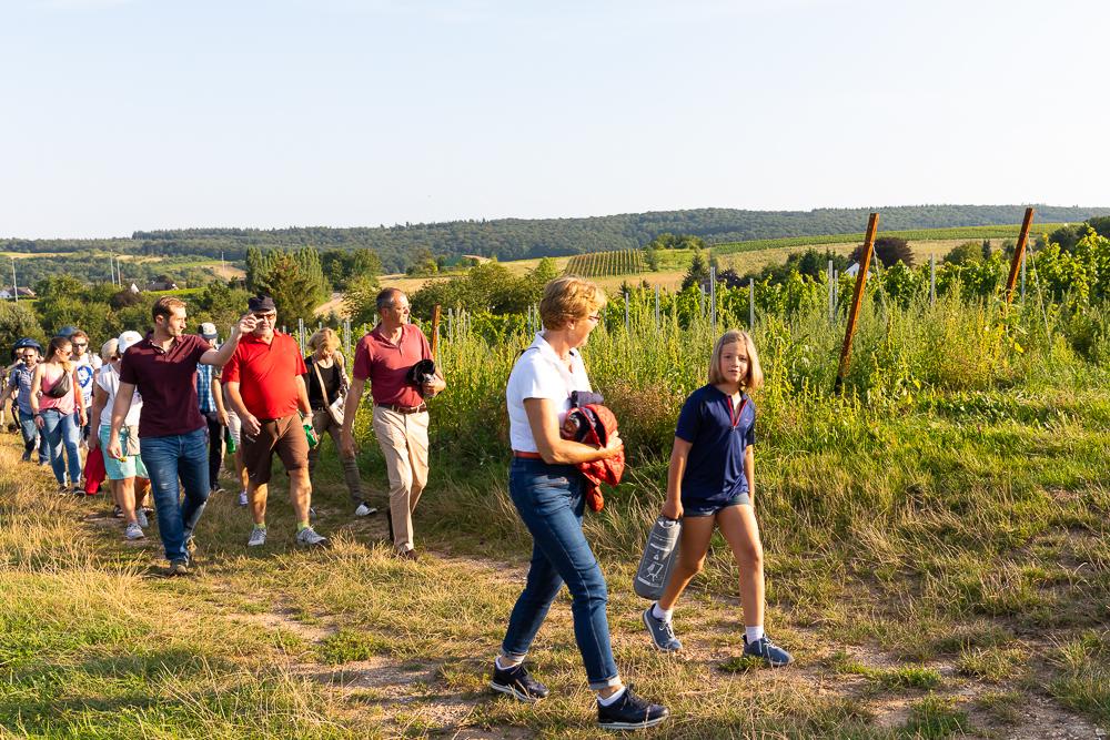 Vinventure Weinprobe mit Barbecue, Gruppenwandern